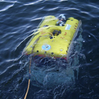 ROV and Side Scan Surveys